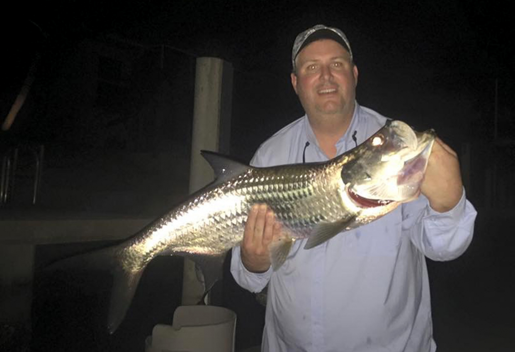Small tarpon at night